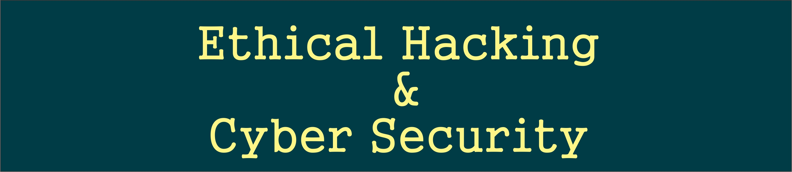 I3indya Ethical Hacking Cyber Security Summer Internship 2019
